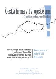 Česká firma v Evropské unii - Proměňme své šance na ... - CEBRE