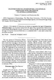 TELENOMUS SPECIES (HYMENOPTERA: SCELIONIDAE) - Plazi