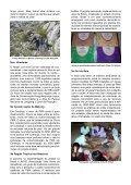 Padrão Internacional para a Coleta Silvestre Sustentável ... - FloraWeb - Page 2