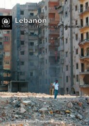 Lebanon Post-Conflict Environmental Assessment - UNEP