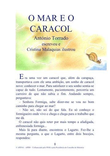 O MAR E O CARACOL