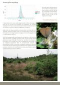 Bruine eikenpage - Natuurpunt - Page 3