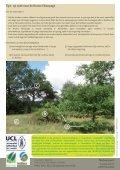 Bruine eikenpage - Natuurpunt - Page 4
