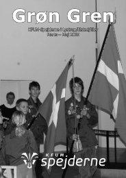 Grøn Gren 2010-1 - Spejdernet