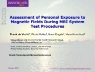 Assessment of Personal Exposure to Magnetic Fields ... - BOHS