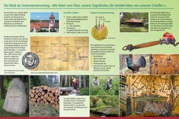 Waldmuseum Flyer - Stadt Bräunlingen