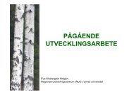 PÅGÅENDE UTVECKLINGSARBETE - Umeå universitet