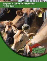 Dairy Feeding Guide - Sorghum Checkoff
