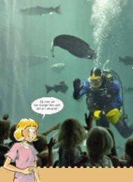 Eg lurer på kor mange liter vatn det er i akvariet! - Cappelen Damm