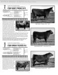 Catalog - Gilchrist Auction Company - Page 5