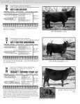 Catalog - Gilchrist Auction Company - Page 7