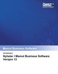 Nyheter i Mamut Business Software Versjon 12