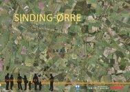 Udviklingsplan for Sinding-Ørre_8.11.10.pdf