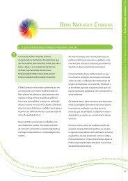 Bens Naturais Comuns. PDF - Programa Cidades Sustentáveis