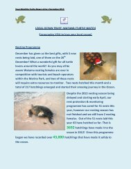 LOCAL OCEAN TRUST: WATAMU TURTLE WATCH Encouraging ...