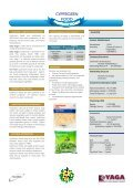 English - IDB Group Business Forum - Page 6