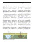 Subsurface iron and arsenic removal: low-cost technology ... - TU Delft - Page 2