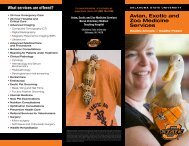 Avian, Exotic and Zoo Medicine Services - Oklahoma State ...