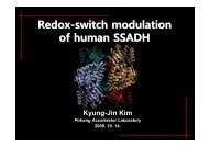 Redox-switch modulation of human SSADH by dynamic catalytic loop
