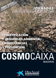 folleto 15 x 21 - IYDD
