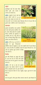 ArogayaVatika - Page 3