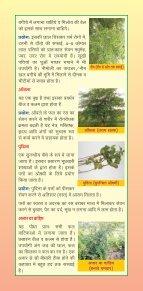 ArogayaVatika - Page 4