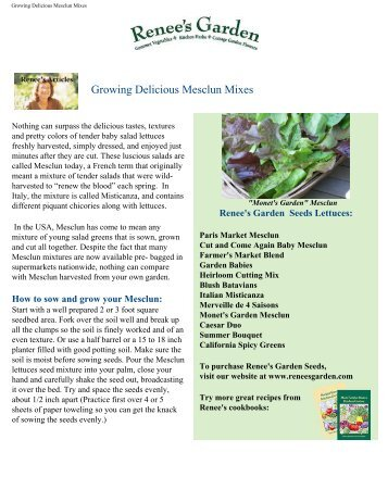 Growing Delicious Mesclun Mixes - Renee's Garden Seeds