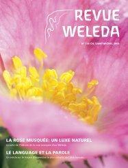 Revue Weleda 136 Saint-Michel 2006 PDF-Download