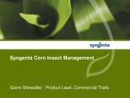 Syngenta Corn Insect Management