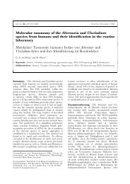 Molecular taxonomy of the Alternaria and Ulocladium ... - CBS - KNAW