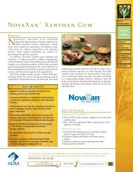 Novaxan Xanthan Gum - ADM