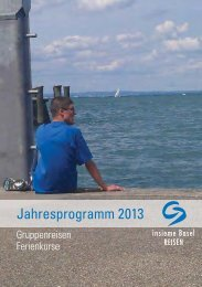 Jahresprogramm 2013 - Insieme Basel