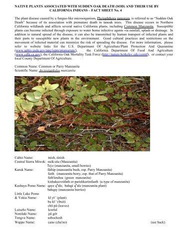 NATIVE PLANTS ASSOCIATED WITH SUDDEN OAK DEATH (SOD ...