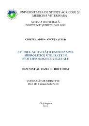 Rezumat Adina Chis romana - USAMV Cluj-Napoca
