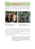 JATIMANE: TRABALHO E SOCIABILIDADE EM UMA ... - Page 6
