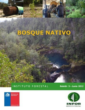 bosque nativo - Infor