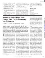 Interglacial hydroclimate in the tropical West Pacific through the late ...