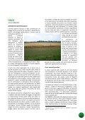 Orzo 2009 - Ersaf - Page 2