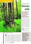 HRVATSKE ŠUME 89 - 5/2004 - Page 4