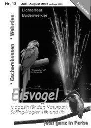 Eisvogel - 3. Jahrgang, Ausgabe 13, Juli-August 2008