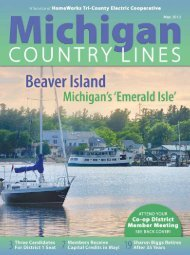 of energy efficiency - Michigan Country Lines Magazine