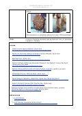 Styela clava Ostasiatisk sjöpung - Främmande arter i svenska hav - Page 3