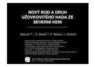 PDF (8,5 Mb) - MEGASPHERA-* Pardubice