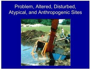 Delineating Problem Sites - NEIWPCC