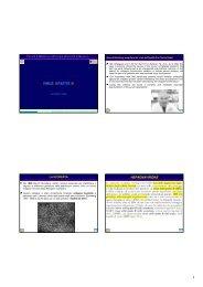 VIRUS EPATITE B - Sezione di Microbiologia