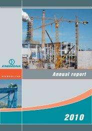 Enemona 2010 Annual Report