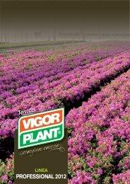Catalogo Professional 2012 (bassa risoluzione) - Clamer Informa