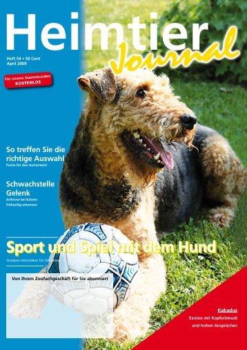 Sport und Spiel mit dem Hund - Petshop.de