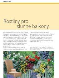 Rostliny pro slunné balkony