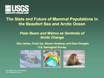 Polar Bears and Walrus